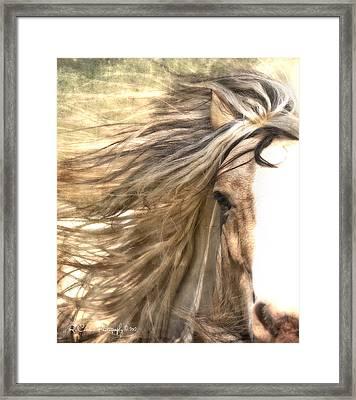 The Wild Side Framed Print