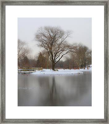 The Willows Park - Newtown Square In Winter Framed Print