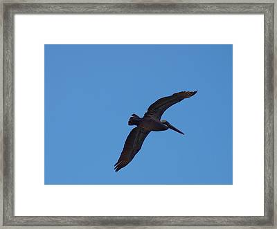 The Wind Beneath My Wings Framed Print