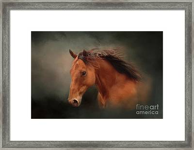 The Wind Of Heaven - Horse Art Framed Print