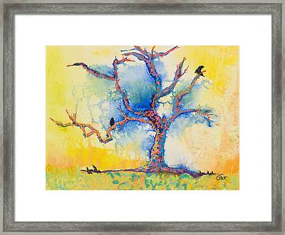 The Wind Riders Framed Print by Pat Saunders-White