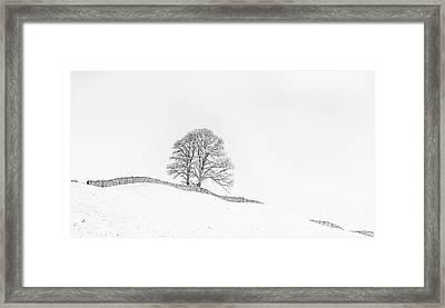 The Winding Wall Framed Print by Janet Burdon