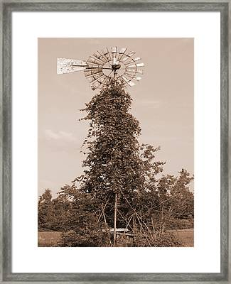 The Windmill Framed Print by Audrey Venute