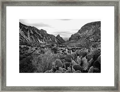 The Window 2 Black And White Framed Print