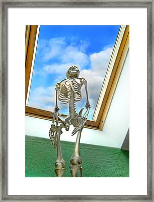 The Window Framed Print by Robert Lacy