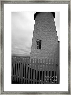 The Window Framed Print by Timothy Johnson