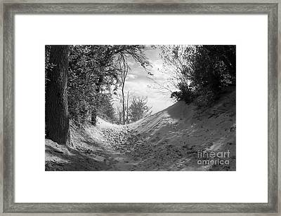 The Windy Path Framed Print by Cathy  Beharriell