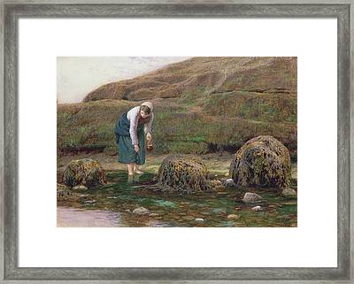 The Winkle Gatherer Framed Print by John Dawson Watson