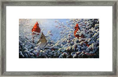 The Winter Garden And Cardinals Framed Print