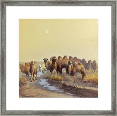 The Winter Of Desert Framed Print by Chen Baoyi