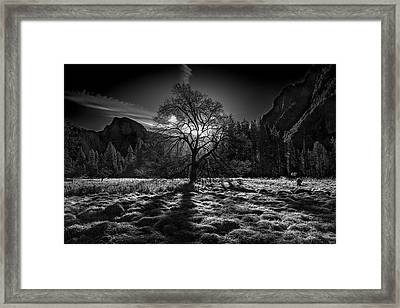The Winter Spirit Framed Print