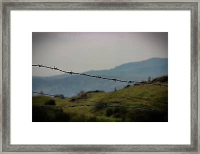 The Wire Framed Print by Martin Newman