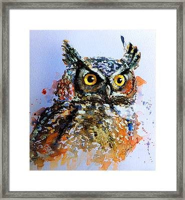 The Wise Old Owl Framed Print by Steven Ponsford