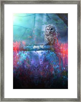 The Wise One Framed Print by Hector Cabrera