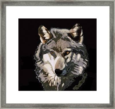 The Wolf Framed Print by Shaun Poole