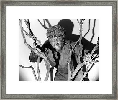The Wolfman, 1941 Framed Print by Granger