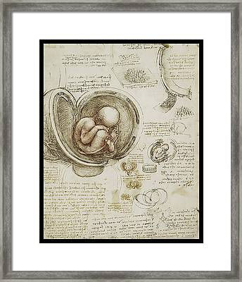 Framed Print featuring the painting The Womb And Embreyo  by James Christopher Hill