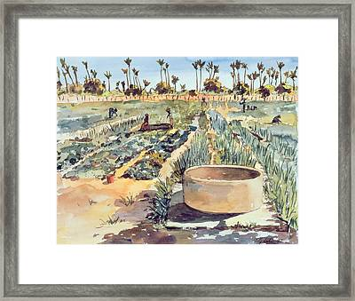 The Wome's Garden  Senegal West Africa Framed Print by Tilly Willis