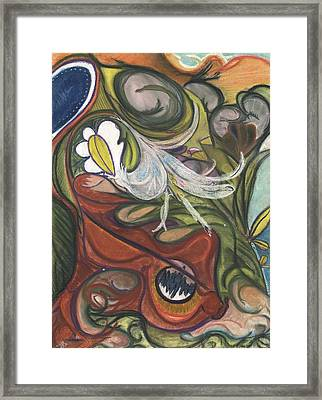 The Wonder Garden Framed Print by Stu Hanson