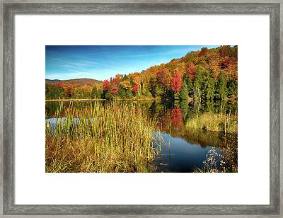 The Wonder Of Autumn Framed Print