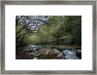 The Wonder Of Autumn Framed Print by Mike Eingle