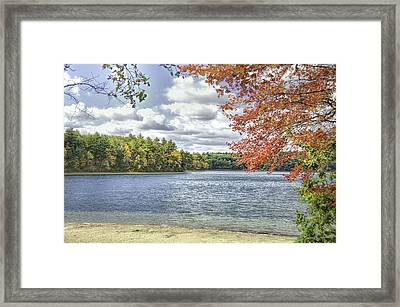 The Wonders Of Walden Framed Print by Ike Krieger