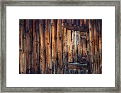 The Wonders Of Wood Framed Print by Ross Powell