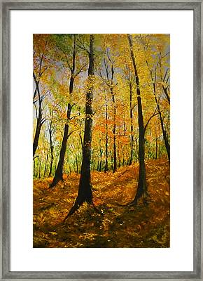 The Wood For The Trees Framed Print by Lizzy Forrester