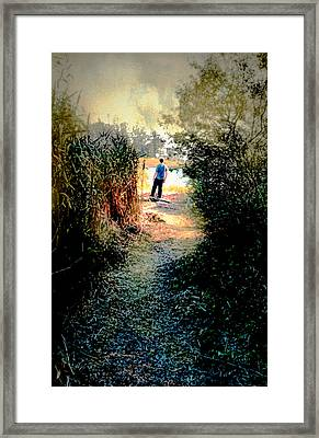 The Wooded Path Framed Print by Diana Angstadt