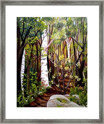 The Woodland Trail Framed Print
