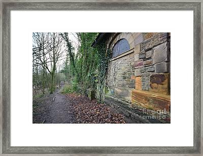 The Woodland Walk Framed Print by Nichola Denny
