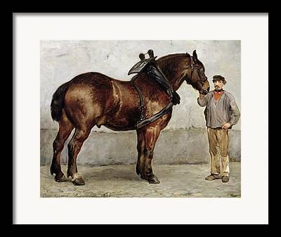 Packhorse Framed Prints