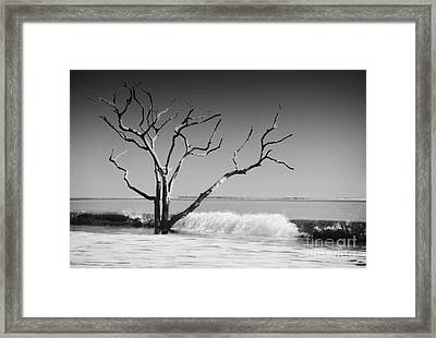 Framed Print featuring the photograph The World Is Coming Down II by Dana DiPasquale