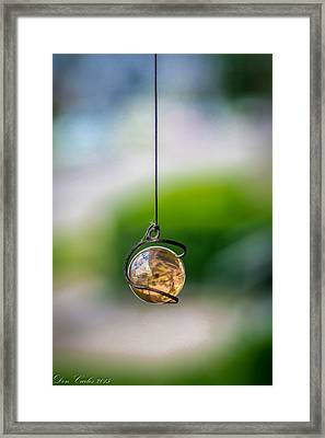 The World On A String Framed Print