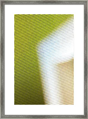 The World Through The Screen Door Framed Print by Alberto Mirabal