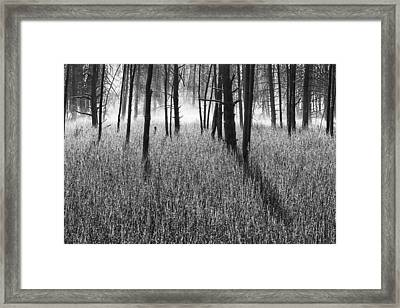 The Wrath Framed Print