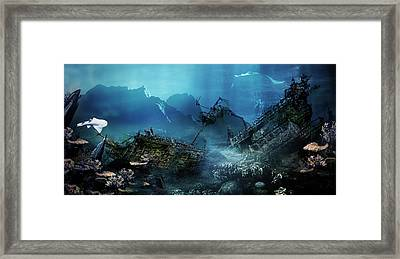 The Wreck Framed Print by Mary Hood