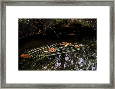 Framed Print featuring the photograph The Year Passes Gently by Odd Jeppesen