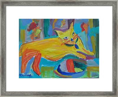 The Yellow Cat Framed Print