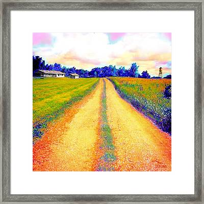The Yellow Dirt Road Framed Print by Jann Paxton