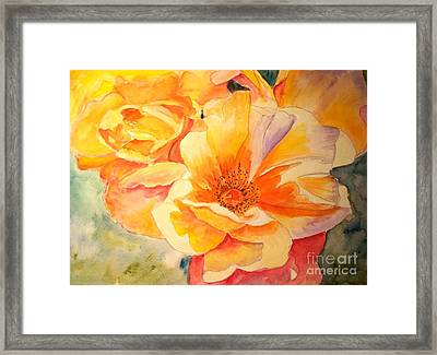 The Yellow Rose Framed Print by Carol Grimes