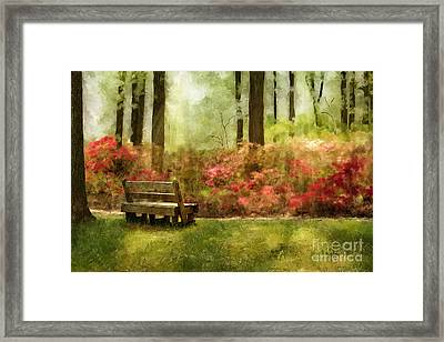 The You You Used To Be Framed Print by Lois Bryan