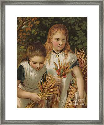 The Young Gleaners Framed Print by English School