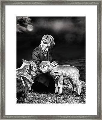 The Young Ones Framed Print by Pennie  McCracken