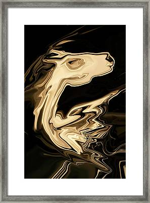 The Young Pegasus Framed Print by Rabi Khan