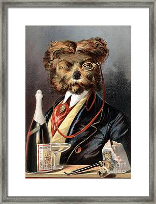 The Young Swell Aristocratic Dog 1869 Framed Print