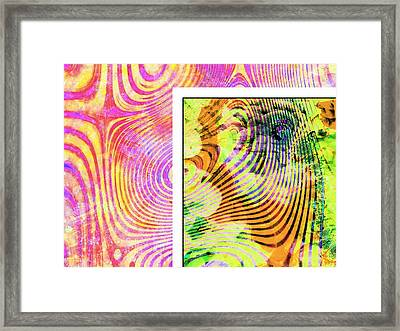 The Zebra Framed Print by Contemporary Art
