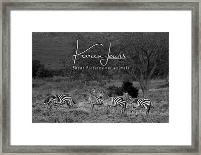 Framed Print featuring the photograph The Zebra Tree by Karen Lewis