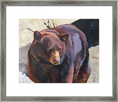 The Zen Of Being Bear Framed Print by J W Baker