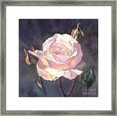 Thea's Rose Framed Print